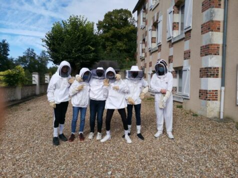 Ruche A Sasnières Collège Sainte Cecile Montoire